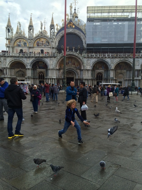 Chasing pigeons in St. Mark's Square